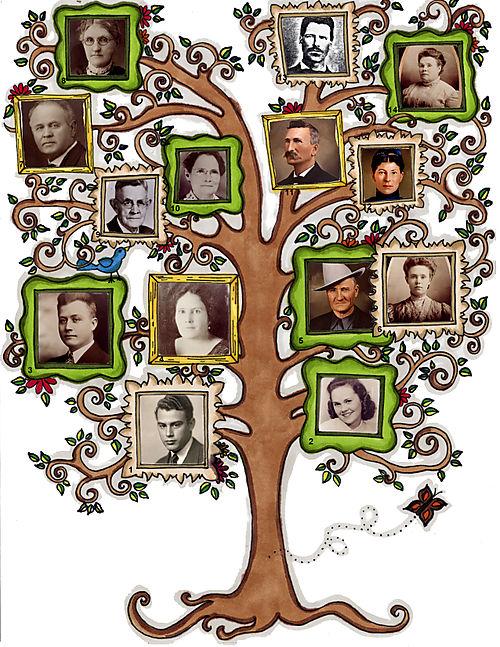3 Generation Tree