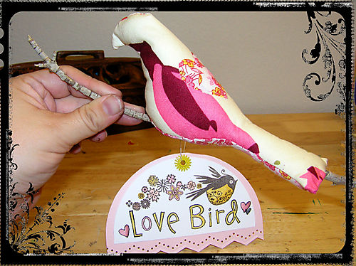 Blog - Love Bird
