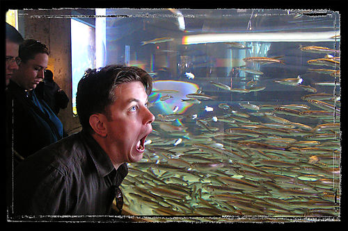 Blog - Jon eats fish