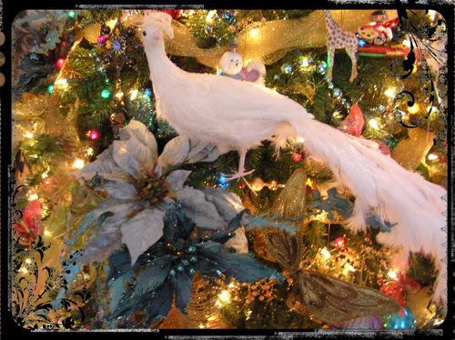 Blog - After Christmas Tree Close-up