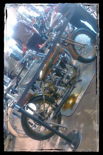 Harley 4 Blog