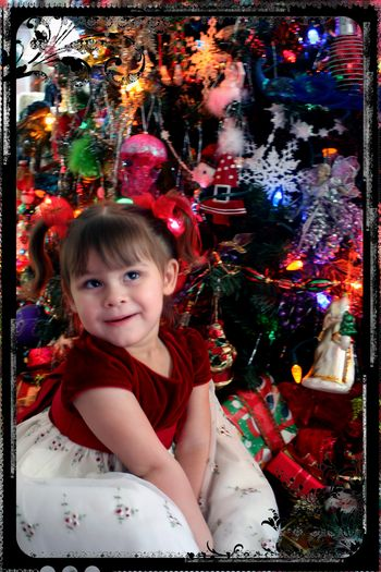 Blog - Eraleigh by the Tree