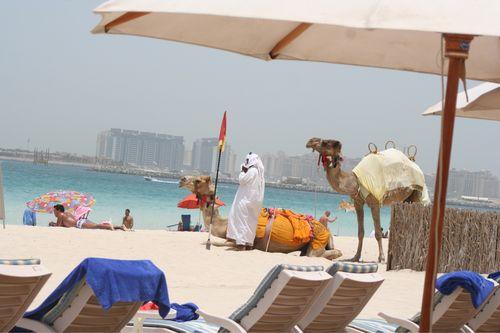 Dubai Day 3 - Part 1