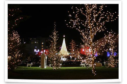 Blog - Temple Square Lights 6a