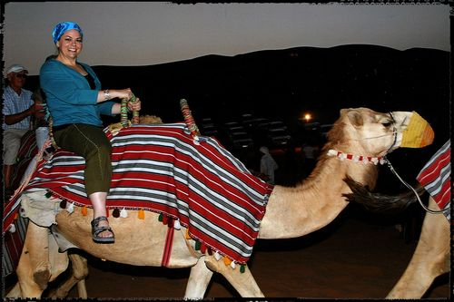 Blog - camel ride