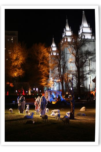 Blog - Temple Square Lights 3