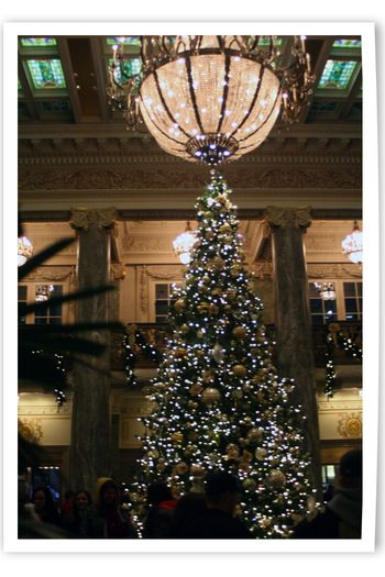 Blog - Temple Square Lights 7