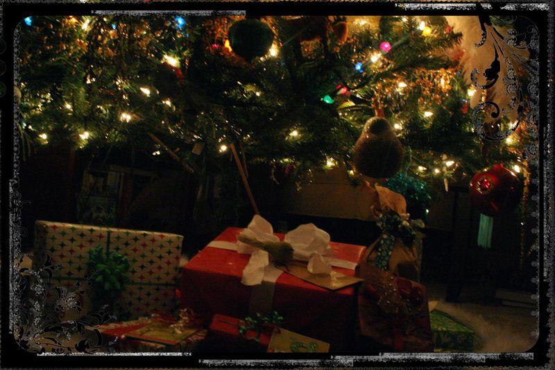 Blog - Christmas Light Photo Experiment 3