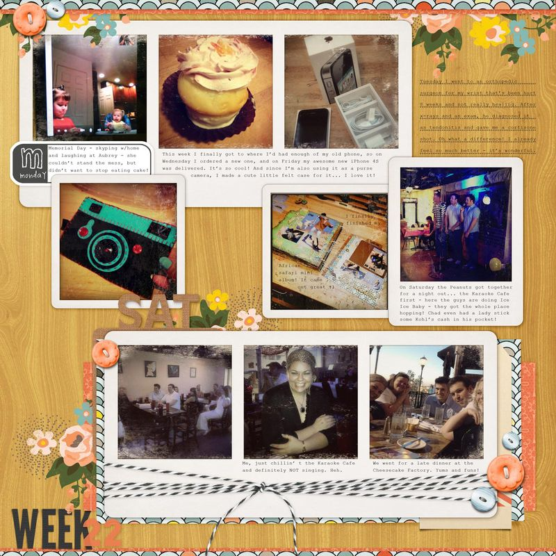 Project-Life-2012-Week-22