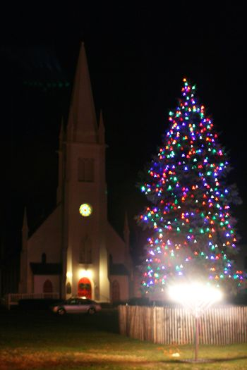 Branford Town Green Christmas Tree 2012