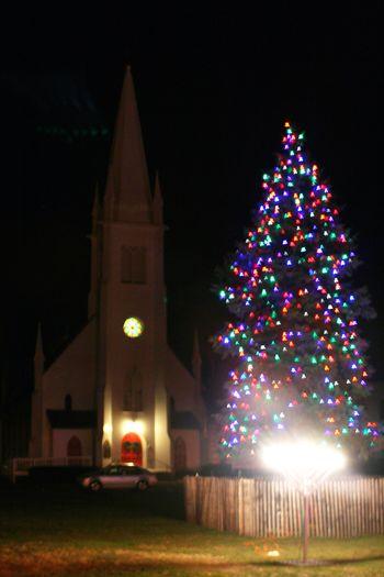 Branford Town Green Christmas Tree 2012