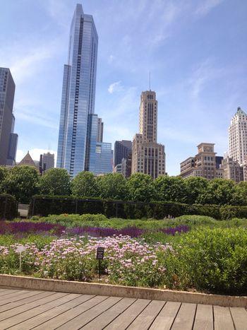 Artist and Sketchbook - Garden and Skyline
