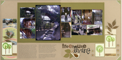 Treehouse_living_2