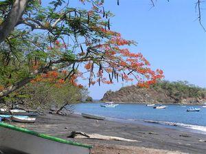 Playa_ocotal